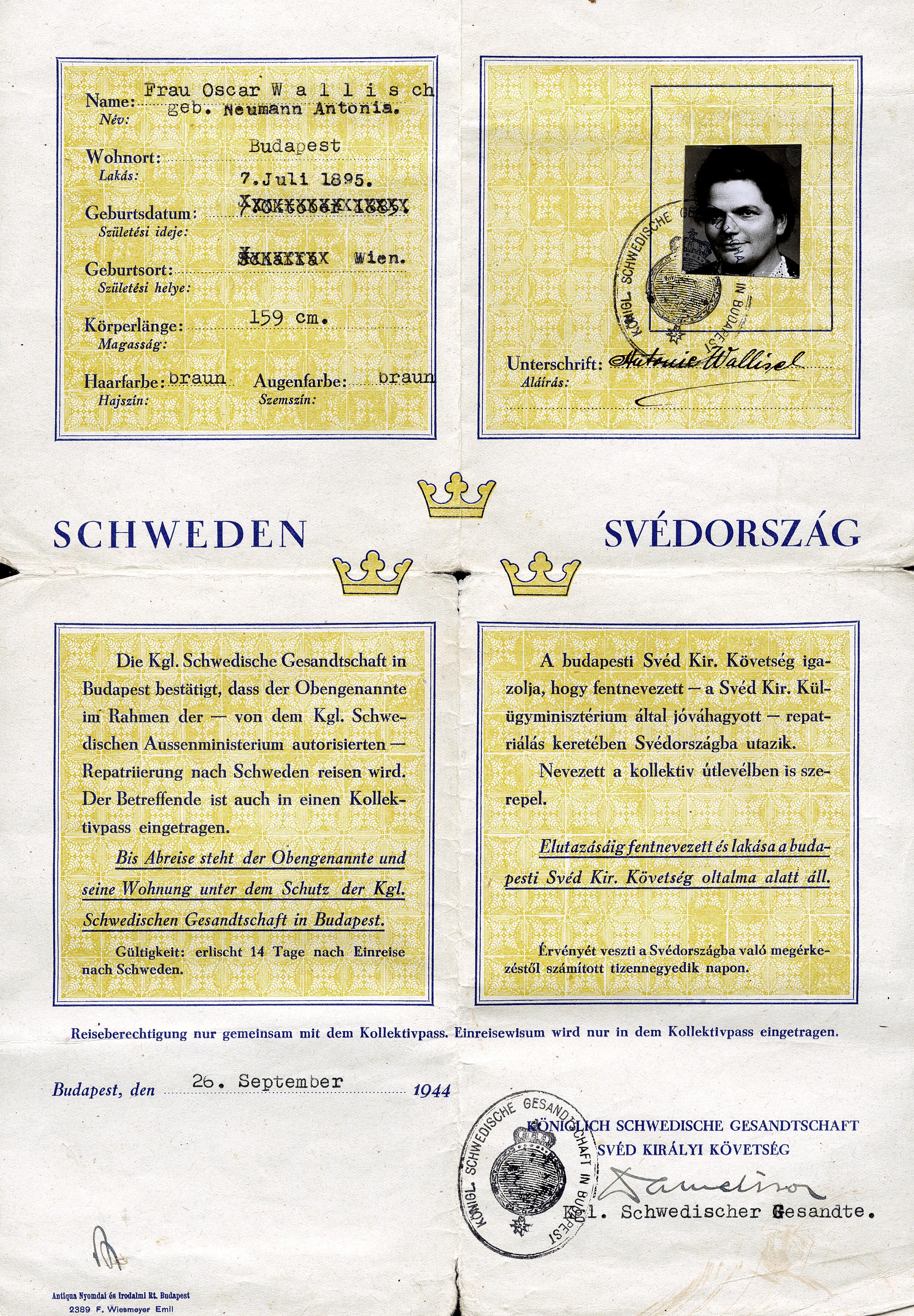 Schwedischer Schutzpass von Antonia Wallisch