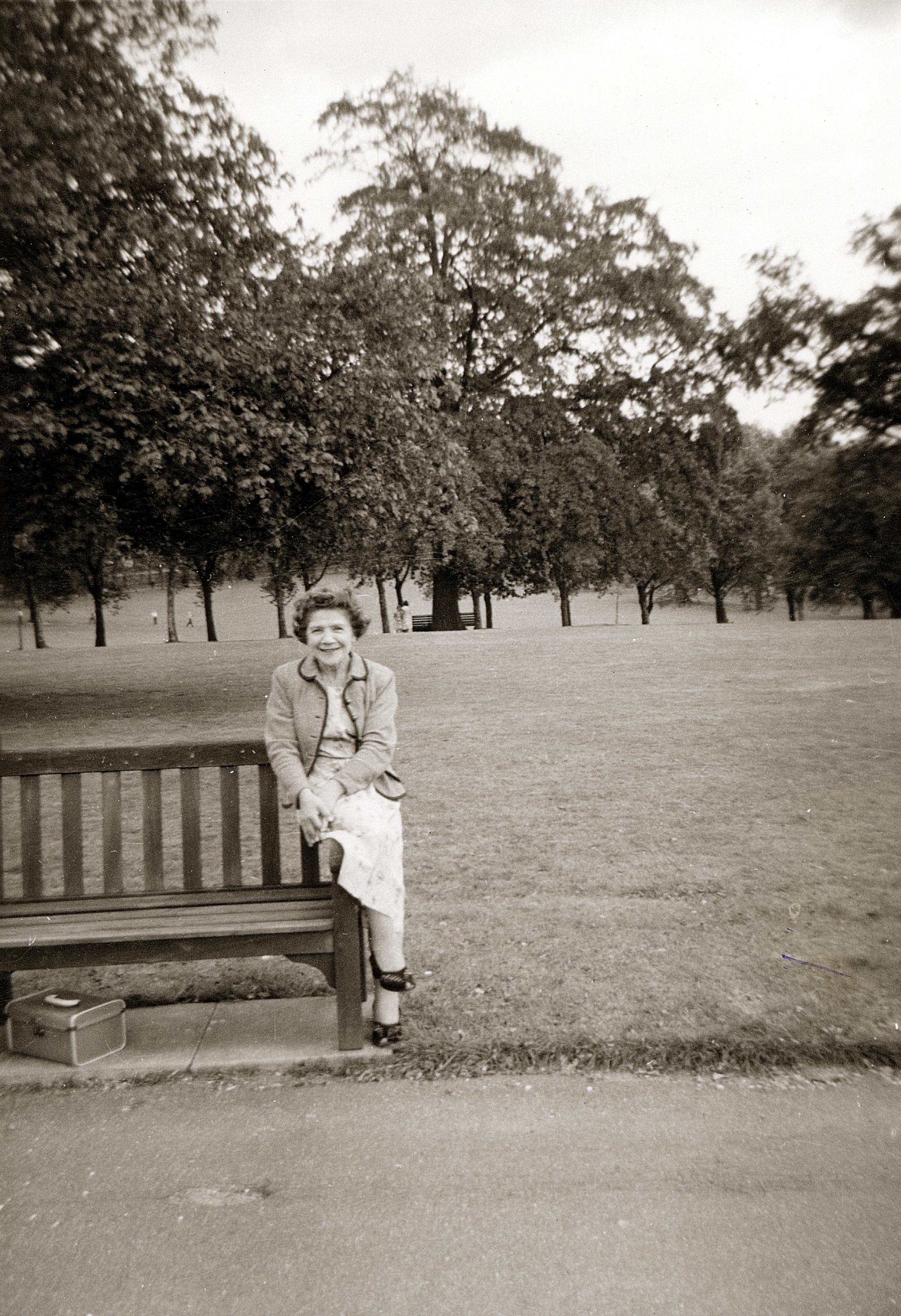 Rosa im Park