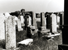 The graves of Gabor Paneth's paternal grandparents in the Papa Jewish cemetery